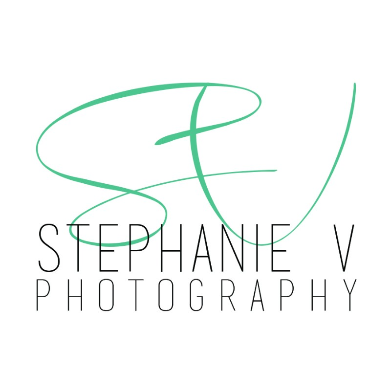 stephs.new_.logo_.again-3a